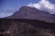 Aufstieg auf den Kilimanjaro, Mawensi