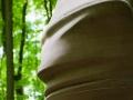 Skulpturenpark Waldfrieden, Tony Cragg, Here Today Gone Tomorrow