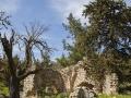 Kirchenruine (Panagia Plataniotissa)