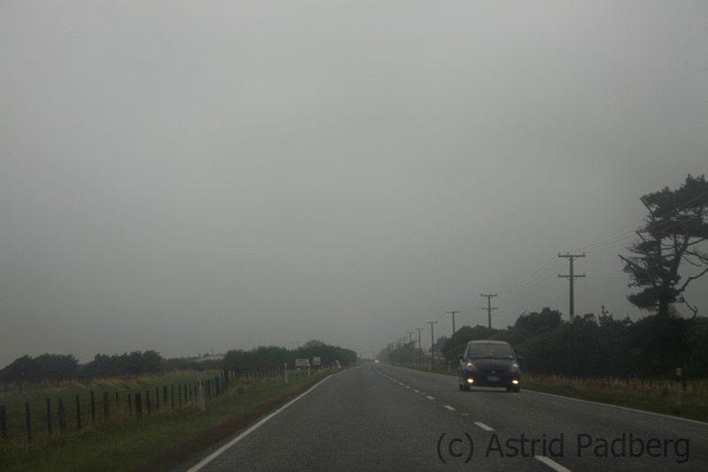 Auf dem Weg von Hokitika zum Arthur's Pass