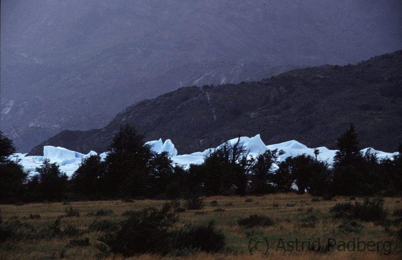 Glaciar Grey (1994) aus der Ferne