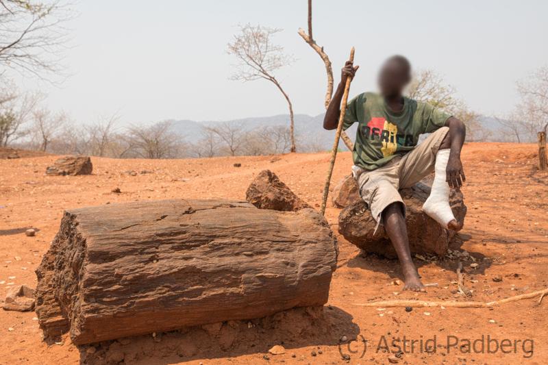Guide beim Chirundu Petrified Forest