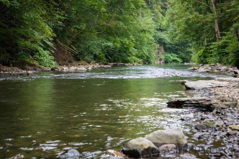 Sonnborner Ufer