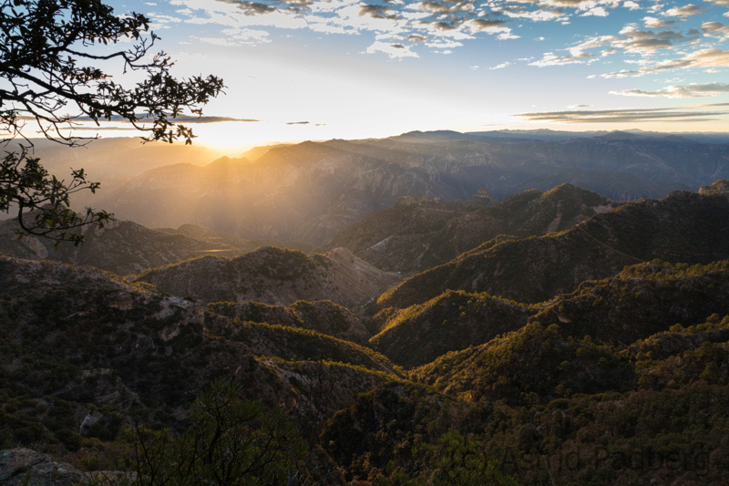 Blick in den Kupfercanyon bei Sonnenaufgang