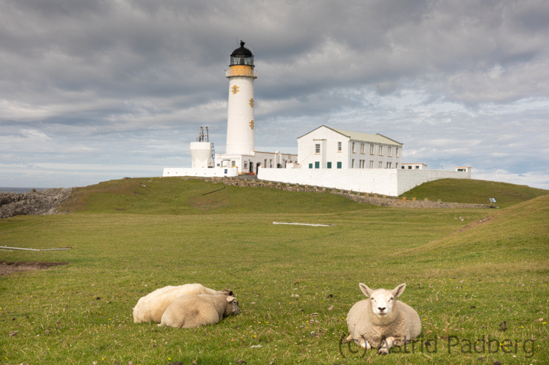 Fair-Isle-Southern-Lighthouse