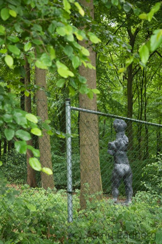 Blick in Skulpturenpark