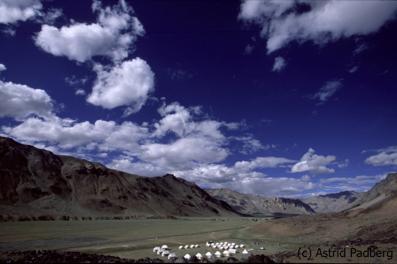 Sarchu-Camp