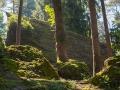 Landschaft Tierpark Goldau
