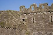 Beaumaris, Castle