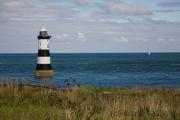 Leuchtturm und Puffin Island