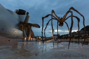 Maman, Louise Bourgeois /Fire Fountain, Yves Klein