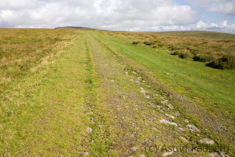 Weg von Ivybridge nach Holne