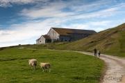 Fair Isle, Good Shepherd IV