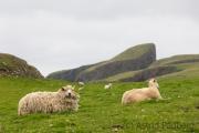 Fair Isle, Sheep Rock