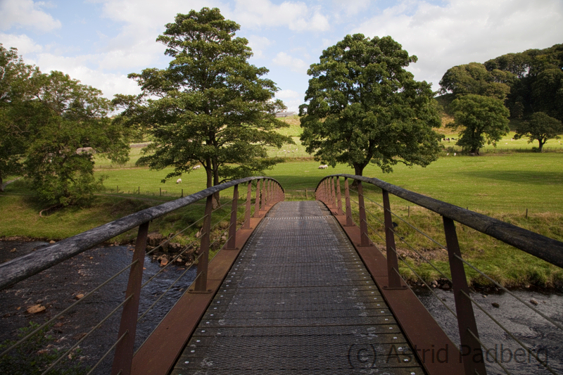 Willowford, New Bridge