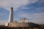St Mary's Island / Lighthouse