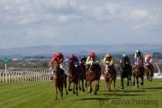 Carlisle, Pferderennen