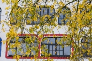Luther-Melanchton-Gymnasium