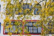 Luther-Melanchton-Gymnasium