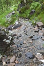 Kinlochleven nach Blackwater Reservoir