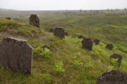 Friedhof der Arbeiter