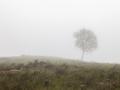West-Highland-Way nach Kinlochleven