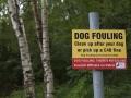 Kein Hundeshit, bitte