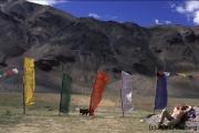 Gebetsfahnen in Sarchu-Camp