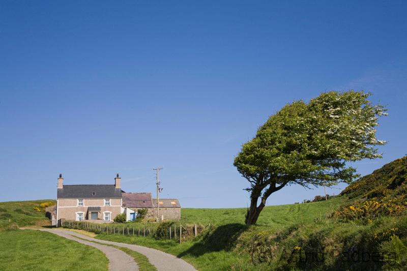 Zwischen Bryn Swynog und Aberdaron