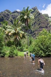 Nuku Hiva; Weg zum Wasserfall Vaipo