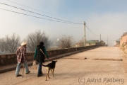 Wanderung mit Straßenhund, Cerocahui