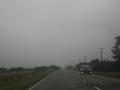 Straße zwischen Hokitika und Geymouth