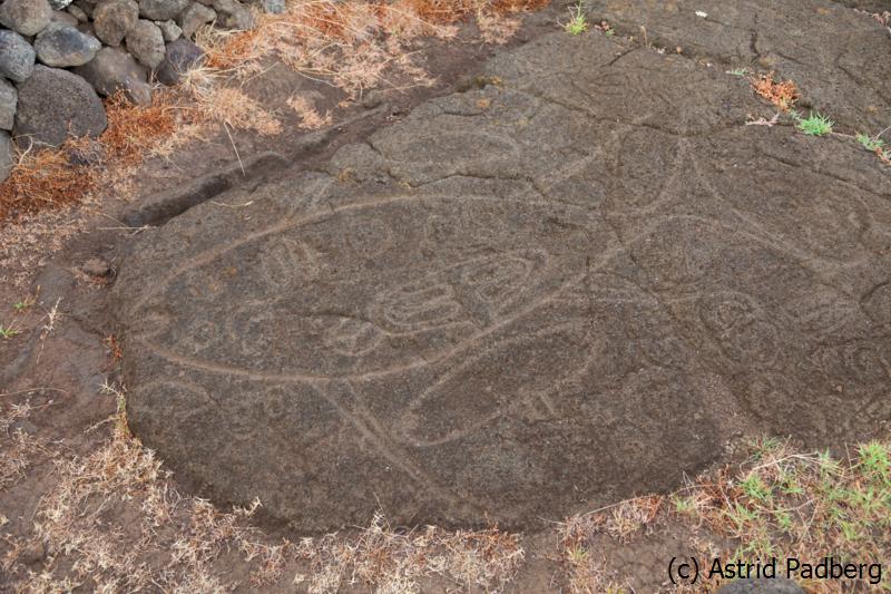 Nordküste, Petroglyphen