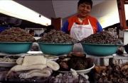 Welcome to Peru, Muschelverkäuferin