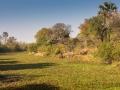 Maramba River