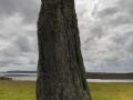 Clivocast Standing Stone (Uyea Beck)