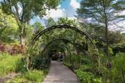 Botanischer Garten, Orchideengarten
