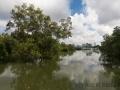 Landschaft, Sungei Buloh Wetland Reserve