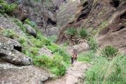 Wanderung durch die Masca-Schlucht