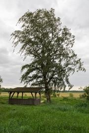 Landschaft bei Melchers Hütte